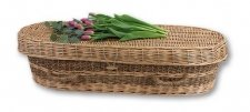 Biodegradable Seagrass Pet Coffins